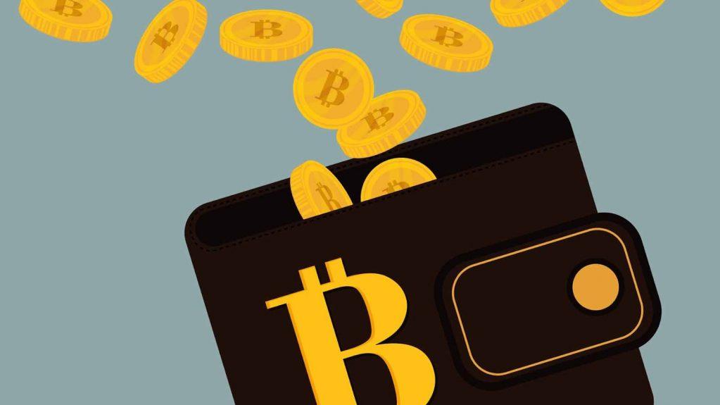 capture nouveau style de obtenir de nouveaux Bitcoin Wallet - Les meilleurs portefeuilles de Crypto ...