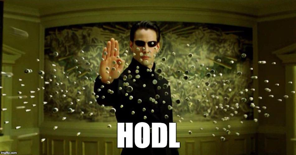 origine du HODL Un guide pour stocker les Cryptoorigine du HODL Un guide pour stocker les Crypto