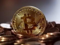 Le Bitcoin ne sera jamais une réserve de valeur d'après les économistes